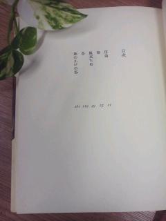 TS3R0938.jpg